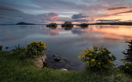 Preview wallpaper Nature landscape, shore, grass, flowers, sunset