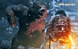 Preview wallpaper Rise of the Tomb Raider, angry bear
