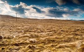 Небо, облака, поле, трава