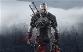 Aperçu fond d'écran The Witcher 3: Wild Hunt, l'homme de cheveux blancs