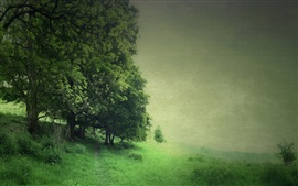 Preview wallpaper Trees, field, green style