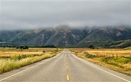 США, Калифорния, дорога, трава, горы