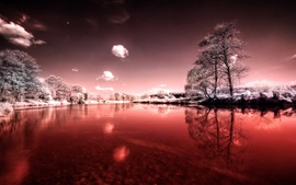 Winter, river, sky, snow, trees, grass, leaves, purple style