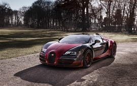 Preview wallpaper 2015 Bugatti Veyron Grand Sport Vitesse red supercar