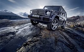 Preview wallpaper 2015 Mercedes-Benz G500 W463 SUV car