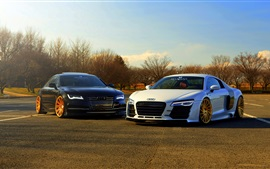 Audi R8 white, A7 black, two cars