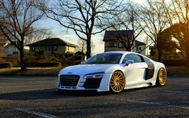 Preview wallpaper Audi R8 white car side view, trees