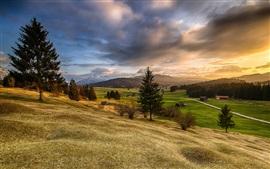 Бавария, горы, холмы, деревья, поля, дома, восход