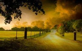 HDR nature scenery, trees, yellow leaves, road, house, dusk