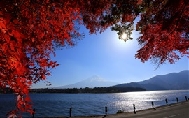 Preview wallpaper Japan, Mount Fuji, road, river, twigs, red leaves, sun