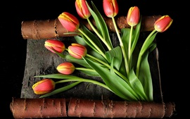 Preview wallpaper Red yellow petals, tulips, bark, black background