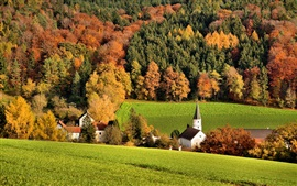 Slope, forest, trees, field, houses, church, autumn