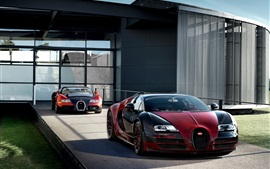 Preview wallpaper Two Bugatti Veyron Grand Sport Vitesse supercars