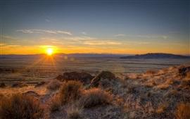 Utah, EE.UU., la hierba, la salida del sol, amanecer