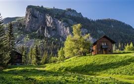 Valais, Suíça, Alpes, montanhas, árvores, grama, casa