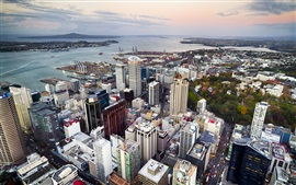 Preview wallpaper Auckland, New Zealand, city, street, buildings, coast