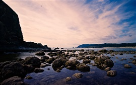 Praia, mar, rochas, pássaros, céu, crepúsculo