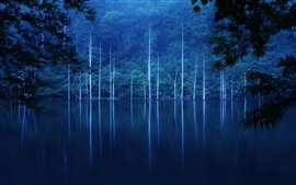 Preview wallpaper Forest, night, hillside, lake, trees, fog