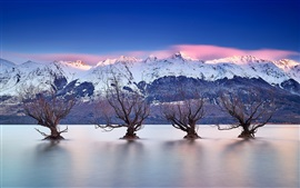 Preview wallpaper Lake Wakatipu, Queenstown, New Zealand, Southern Alps, trees