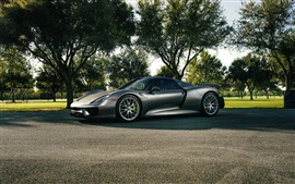 Preview wallpaper Porsche 918 Spyder silvery supercar, road, trees