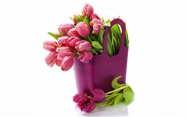 Preview wallpaper Purple fresh tulips, bouquet flowers, white background