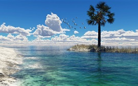 Preview wallpaper Sea, palm tree, birds, seagulls, clouds