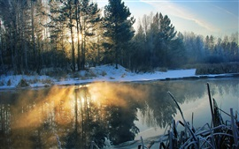 Preview wallpaper Winter, morning, river, snow, trees, sun rays