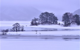 Winter snow, lake, islands, trees, ice, fog