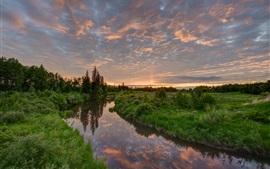 Hermoso paisaje de la naturaleza, río, hierba, árboles, puesta del sol, nubes