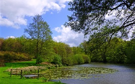 Preview wallpaper England, Leeds Castle, garden, pond, grass, bushes, trees