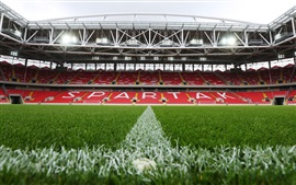 Preview wallpaper FC Spartak Stadium, football field, lawn, lights