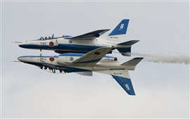 Preview wallpaper Kawasaki T-4, Blue Impulse, aerobatic group, aircraft
