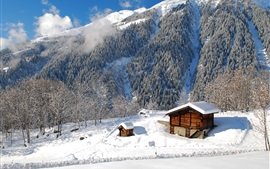 Preview wallpaper Nature landscape, winter, forest, trees, houses, mountains, snow