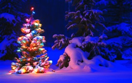 Snow and lights on tree in the forest, Christmas