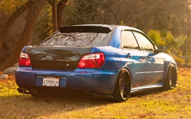Subaru Impreza blue car back view, grass, sunlight