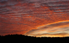 Preview wallpaper Sunset, clouds, forest, trees, sky, glow