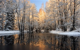 Preview wallpaper Winter, snow, forest, trees, ice, lake