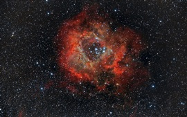 Preview wallpaper Beautiful nebula, rosette, NGC 2237, space, stars