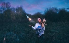 Aperçu fond d'écran Creative design, Amy Spanos, vaisseau spatial, de l'herbe, la nuit