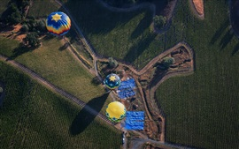 Hot air balloons, farm field, road, countryside