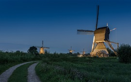 Preview wallpaper Netherlands, windmill, night, road, lights