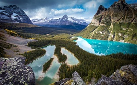 Beautiful valley scenery, mountains, forest, trees, lake