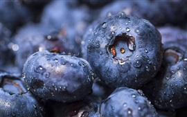 Blueberries close-up, water drops