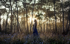 Preview wallpaper Girl in the forest, morning, sunrise, trees, flowers