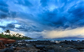 Preview wallpaper Hawaii, coast, clouds, storm, palm trees, stones, dusk
