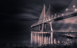 Preview wallpaper Portugal, bridge, night, lights