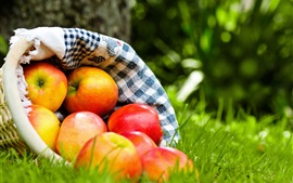 Red apples, fruits, cloth bag, grass