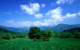 Preview wallpaper Trees, mountains, grass, sky, clouds, valley