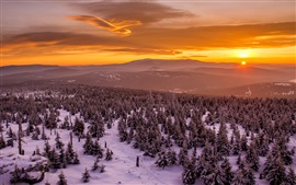 Winter, sunset, trees, snow, mountains, red sky
