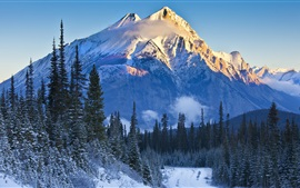 Preview wallpaper Alberta, Banff National Park, Canada, mountains, trees, snow, road